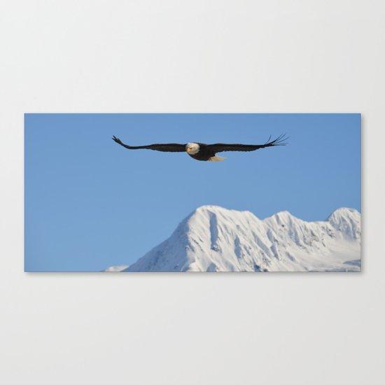 Bird's Eye View! Canvas Print