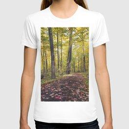 A walk down the Path T-shirt