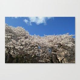 Seattle Bloom Canvas Print