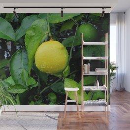 The Lemon Wall Mural