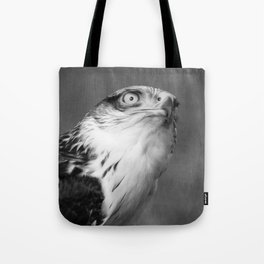 Red-tailed Hawk I B&W Tote Bag