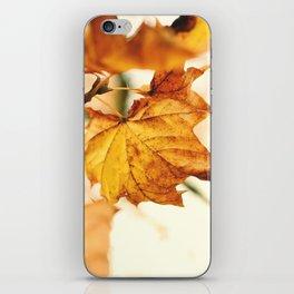 A Fall Like This iPhone Skin