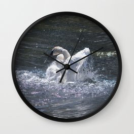 Swan's Lake - Preening Trumpeter Swan Wall Clock
