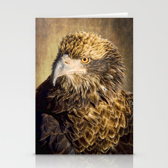 Fine Feathered Friend Stationery Cards