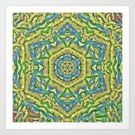 Beautiful wattle mandala Art Print