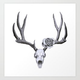 Stag skull with rose Art Print