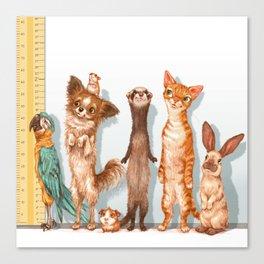 Pets Lineup Canvas Print