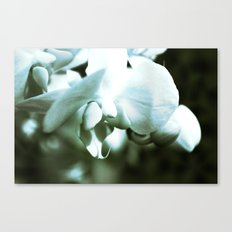 mossy orchid Canvas Print