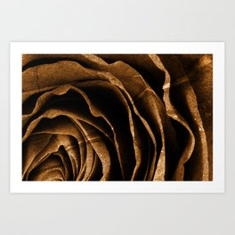 Sepia Grunge Rose Art Print