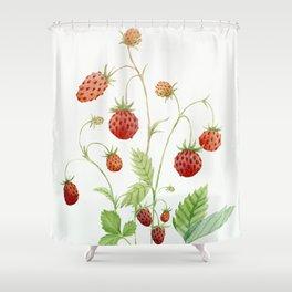 Wild Strawberries Shower Curtain