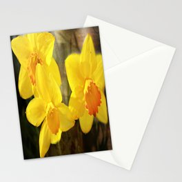 Yellow Trumpets - Daffodils Stationery Cards