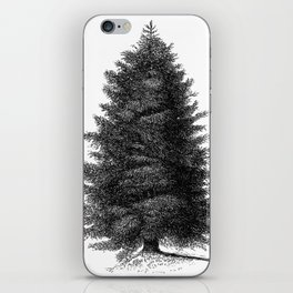 Blue spruce #society6 iPhone Skin