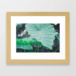 Paradise 04 Framed Art Print