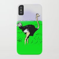 ostrich iPhone & iPod Cases featuring Ostrich by wingnang