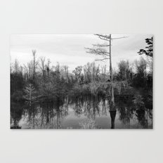 Mississippi Swamp Canvas Print