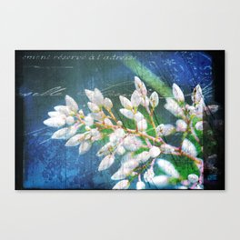 A Splash of Flowers Canvas Print