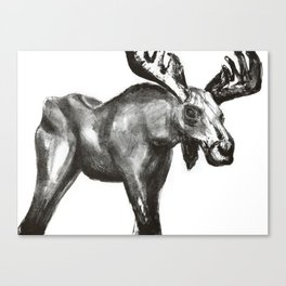 Bullwinkle Canvas Print