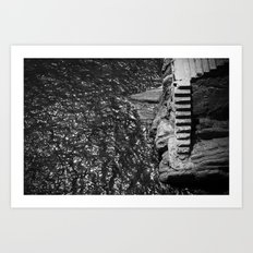 Stares to the water  Art Print