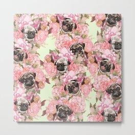 Pugs in Garden Metal Print