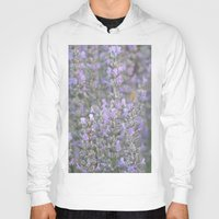 lavender Hoodies featuring Lavender by Stecker Photographie