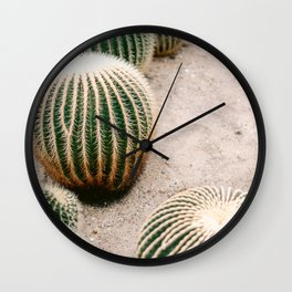 Round cactus | Nature photography art print Wall Clock