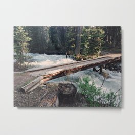 Valley Trail Bridge Metal Print