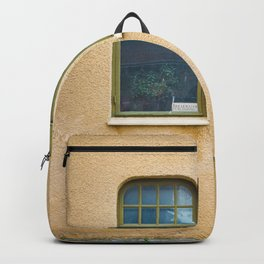 TWO GRAY FRAME GLASS WINDOWS Backpack