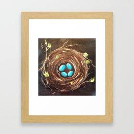 Four Turquoise Eggs Framed Art Print