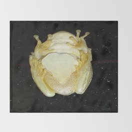 Underbelly The Soft Underside or Abdomen Of A Tree Frog Throw Blanket