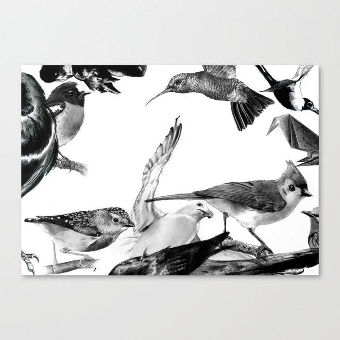 A Volery of Birds Canvas Print