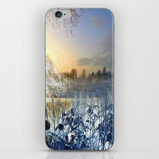 abstract landscape  2 iPhone & iPod Skin