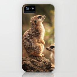 Meerkat Family Photography iPhone Case