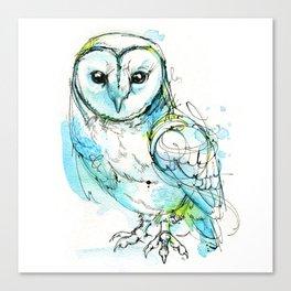 Aqua Tyto Owl Canvas Print