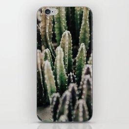 Cactus iPhone Skin
