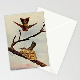 Neltje Blanchan - Bird Neighbours (1903) - Ruby-Throated Hummingbirds Stationery Cards