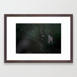 Web Redemption Framed Art Print