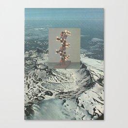 139. Canvas Print