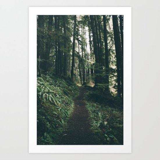 Happy Trails VII Art Print