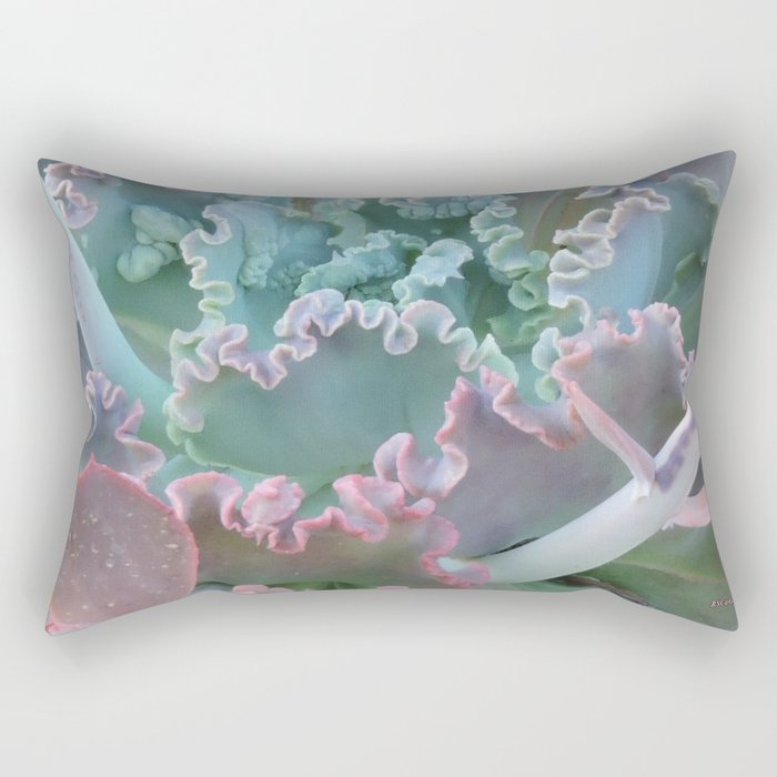 Succulent in the Sand Rectangular Pillow