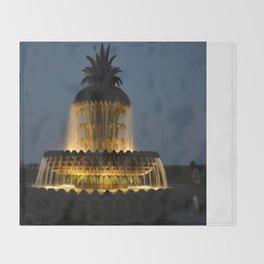 fountain lights Throw Blanket