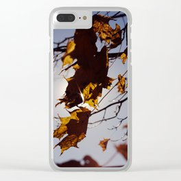 Fall Close Out Clear iPhone Case