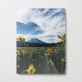 Sparks Lake Bloom Metal Print