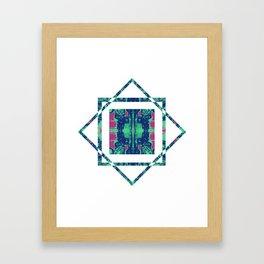 Kaleidoscope Vision Framed Art Print