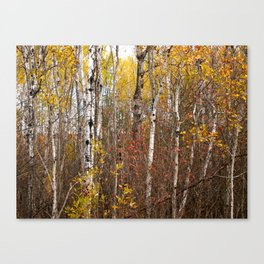 Autumn in Cheboygan, MI Canvas Print