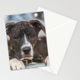 Cute Mastiff Rottweiler Mix  Puppy Stationery Cards