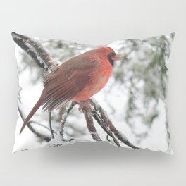 Wet Snow Cardinal (square) Pillow Sham
