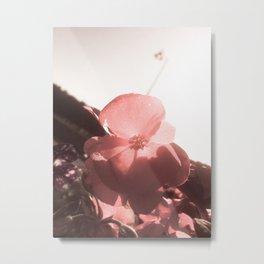 Flower Against the Sky Metal Print