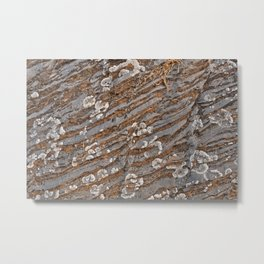 Cracked Stone Striations Metal Print