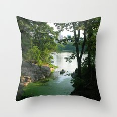 New York Central Park Lake Throw Pillow