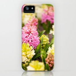 Hyacinthus blooming pink and white iPhone Case